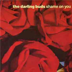 The Darling Buds - Shame On You album mp3